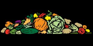 kombinování potravin