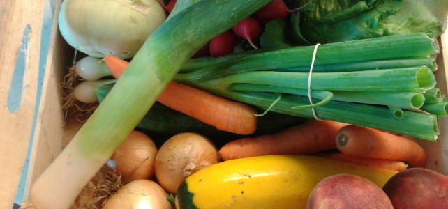 Farmářská bedýnka jako pomocnice při dietě